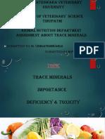 Prudhvi charan Topic on minerals