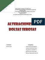 Bolsas_serosas