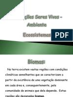 Interações Seres Vivos - Ambiente (meu).pptx