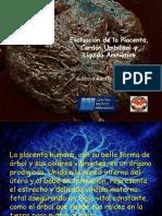 Evaluación de la placenta, cordon umbilical y liquido amniotico