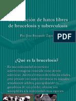 Certificación de hatos libres de brucelosis y tuberculosis