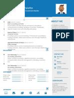 Blue Design Resume-WPS Office