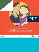 Calendario de embarazo