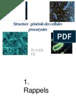 structure et anatomie fonctionnelle des bacteries-converti