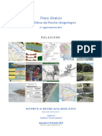 PAI Relazione 2011.pdf