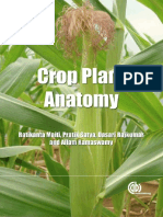 Crop_Plant_Anatomy_This_page_intentional.pdf