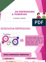 Pubertas dan Kespro