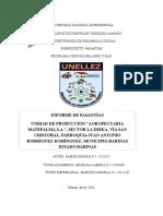 319245107-Informe-de-Pansantias-ramon aranda4