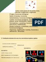 UNIDAD II COMPONENTES MOLECULARES DE LOS ORGANISMOS VIVOS