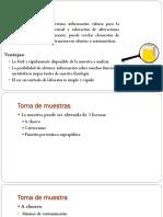 Examen_Elemental_de_Orina