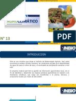 Informe agronomo para el desarrollo 2020