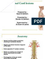 Spinal Cord lesions 1.ppt