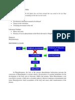 case3_phenylketunuria