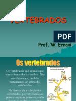 VERTEBRADOS 1