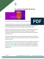 Livro CNV - Marshall - citações.pdf