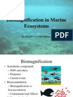 Biomagnification in Marine Ecosystems