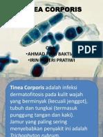 Trichomoniázis tünetei és kezelése - HáziPatika