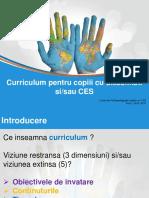 Tema 4 curriculum