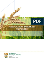 Wheat - Production Guideline