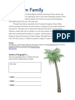 The Palm Family - Activity Sheet