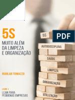 5S MUITO ALÉM DA LIMPEZA E ORGANIZAÇÃO (Lean para pequenos negócios Livro 1)