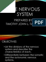 Nervous-system-Students-Copy.pdf
