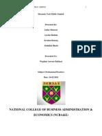 Professional practices report.docx