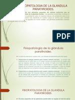 FISIOPATOLOGIA DE LA GLANDULA PARATIROIDES. ORLANDO.