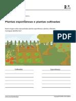 1c2_412_cd_acte.pdf