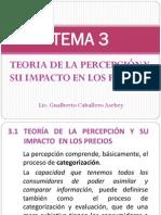 TEMA 3 TEORIA DE LA PERCEPCIÓN