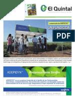 quintal_52.pdf