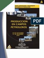 PRODUCCIÓN EN CAMPOS PETROLEROS