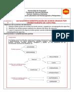 5. SEPARACIÓN E IDENTIFICACIÓN DE ÁC. GRASOS POR CCF