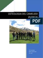 INFORME DE TALLER  OSTEOLOGIA- RAYA