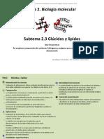 2_3_Glúcidos y lípidos.pptx