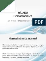 Hígado hemodinámica pdf
