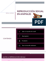 Reproducción sexual en animales