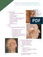 01.Anatomi UPPER GIT