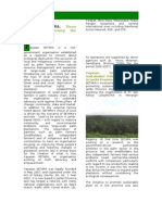 Annual Report Yayasan Setara Jambi