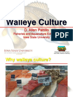Walleye_Culture_Pattillo_eXtension_11-2012
