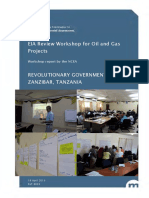 8033_ncea_workshop_report_eia_review_oil_and_gas_-_march_2019_-_zanzibar.pdf
