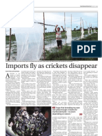 Overview of the Cricket Industry in Cambodia