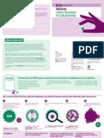 04 Como Funciona El Tratamiento PDF