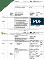 planificação Educação Física - profissionais