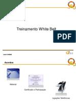 Treinamento White Belt..pdf