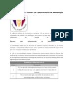 Razones para determinación de metodología RUP