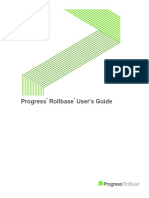 Rollbase_user_guide