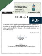 Revisor 2.pdf