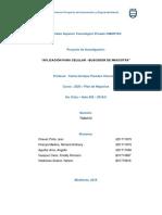 PROYECTO APLICACION DE BUSCADOR DE MASCOTAS - ACTUALIZADO (1).docx