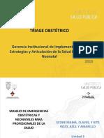 Triage Obstétrico.pdf